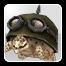Icon: Tintoretto the Turtle
