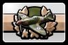 Icon: Plane Mastery I